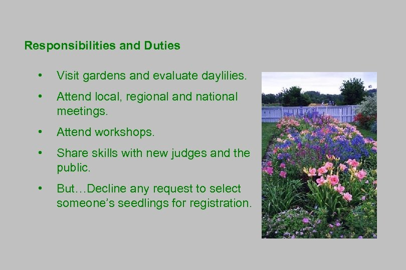 Responsibilities and Duties • Visit gardens and evaluate daylilies. • Attend local, regional and