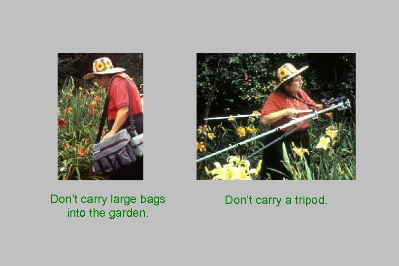 Don't carry large bags into the garden. Don't carry a tripod.