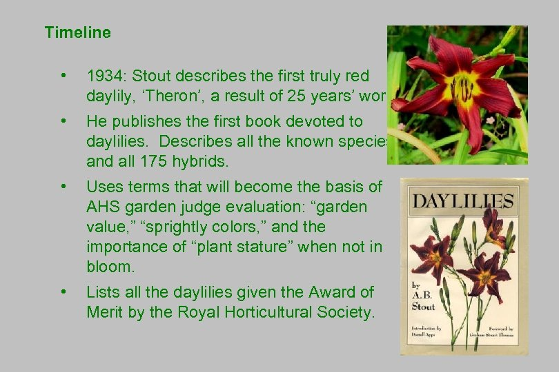 Timeline • 1934: Stout describes the first truly red daylily, 'Theron', a result of