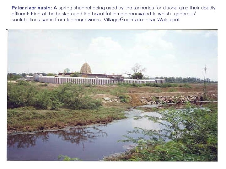 Palar river basin: A spring channel being used by the tanneries for discharging their