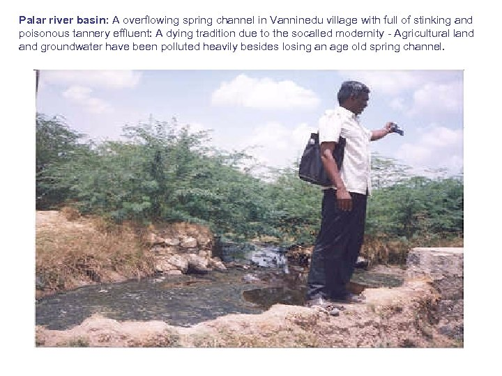 Palar river basin: A overflowing spring channel in Vanninedu village with full of stinking
