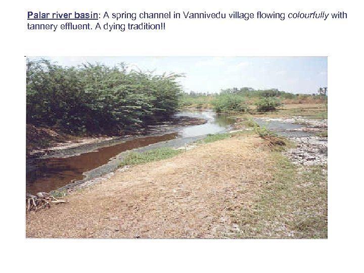 Palar river basin: A spring channel in Vannivedu village flowing colourfully with tannery effluent.