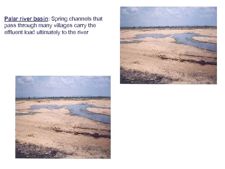 Palar river basin: Spring channels that pass through many villages carry the effluent load
