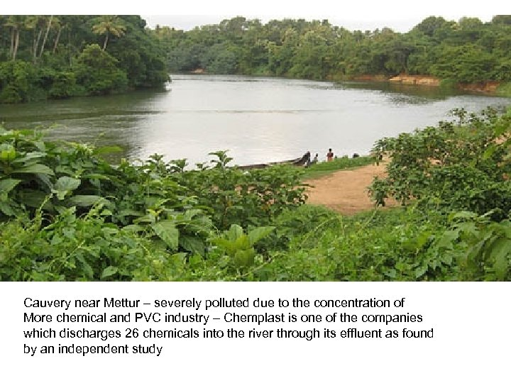 Cauvery near Mettur – severely polluted due to the concentration of More chemical and