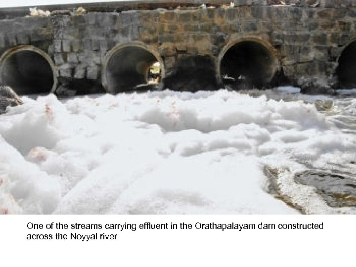 One of the streams carrying effluent in the Orathapalayam dam constructed across the Noyyal