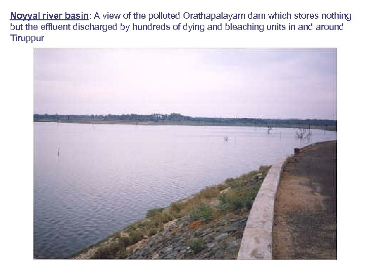 Noyyal river basin: A view of the polluted Orathapalayam dam which stores nothing but