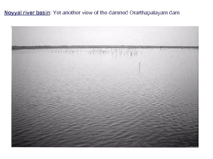 Noyyal river basin: Yet another view of the damned Orarthapalayam dam