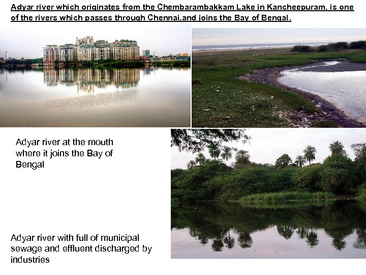 Adyar river which originates from the Chembarambakkam Lake in Kancheepuram, is one of the