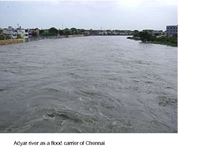 Adyar river as a flood carrier of Chennai