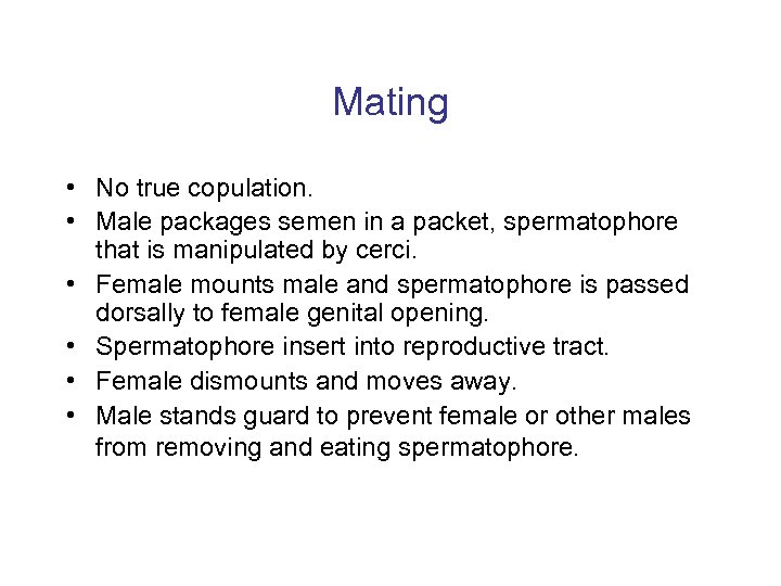 Mating • No true copulation. • Male packages semen in a packet, spermatophore that