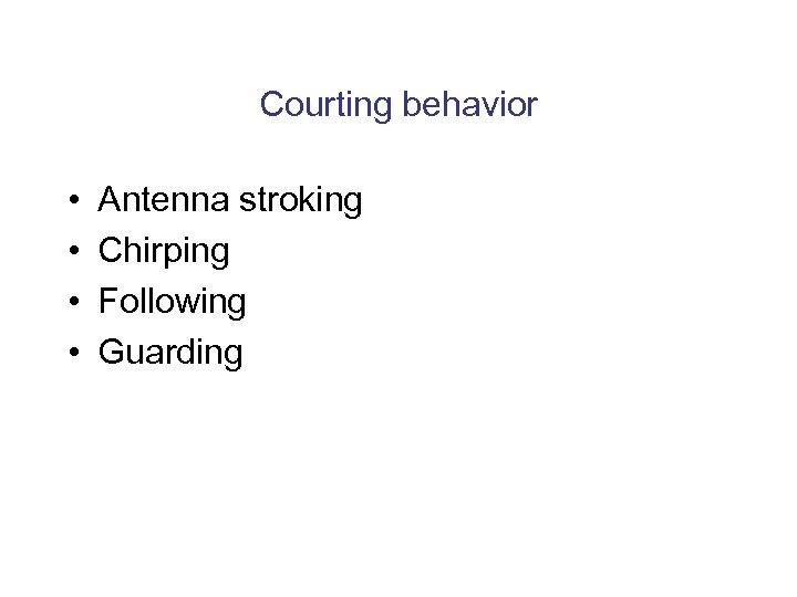 Courting behavior • • Antenna stroking Chirping Following Guarding
