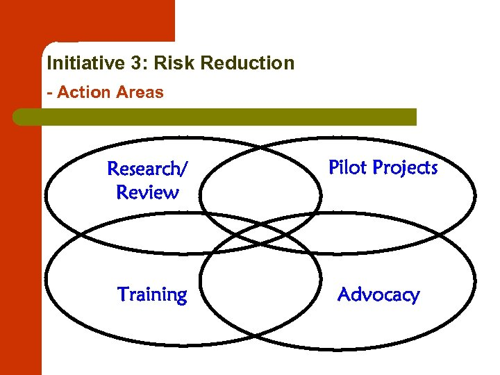 Initiative 3: Risk Reduction - Action Areas Research/ Review Pilot Projects Training Advocacy