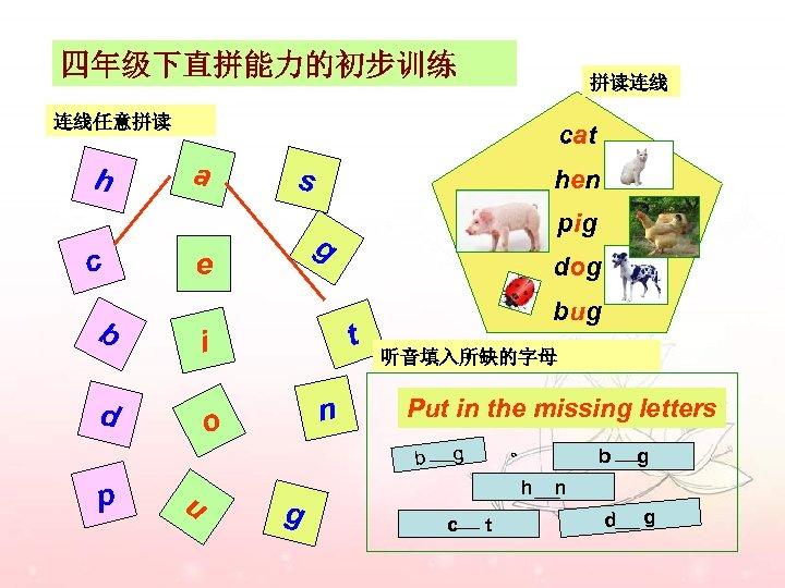 四年级下直拼能力的初步训练 拼读连线 连线任意拼读 h c cat a s dog t i d pig g