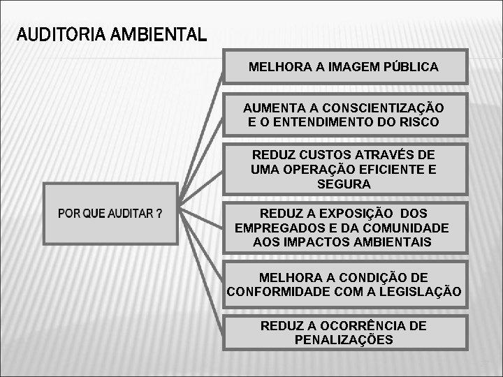 AUDITORIA AMBIENTAL MELHORA A IMAGEM PÚBLICA AUMENTA A CONSCIENTIZAÇÃO E O ENTENDIMENTO DO RISCO