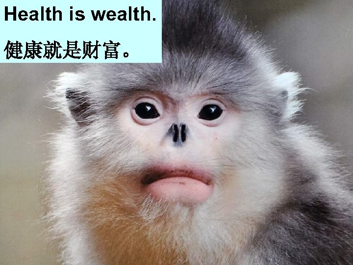 Health is wealth. Get on well with your friends. 健康就是财富。 和朋友好好相处 Eat more fruit