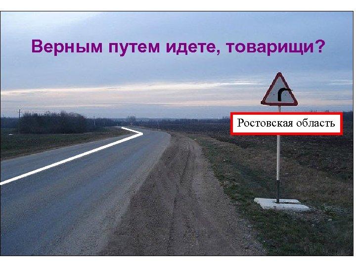 Верным путем идете, товарищи? Ростовская область