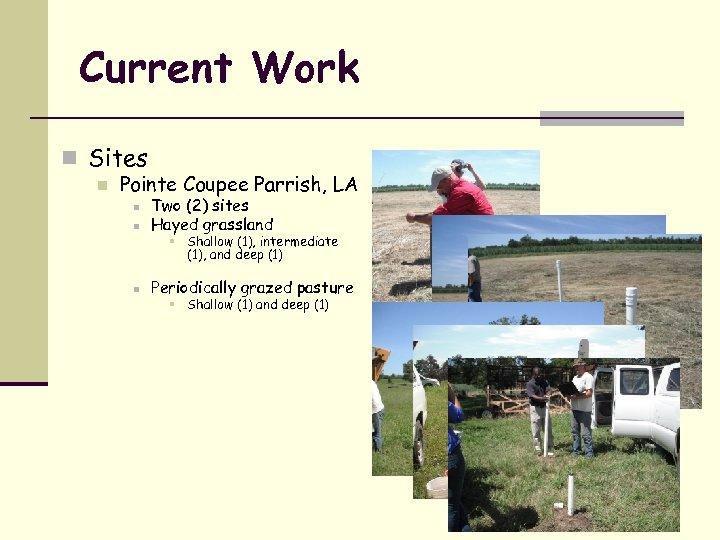 Current Work n Sites n Pointe Coupee Parrish, LA n Two (2) sites Hayed