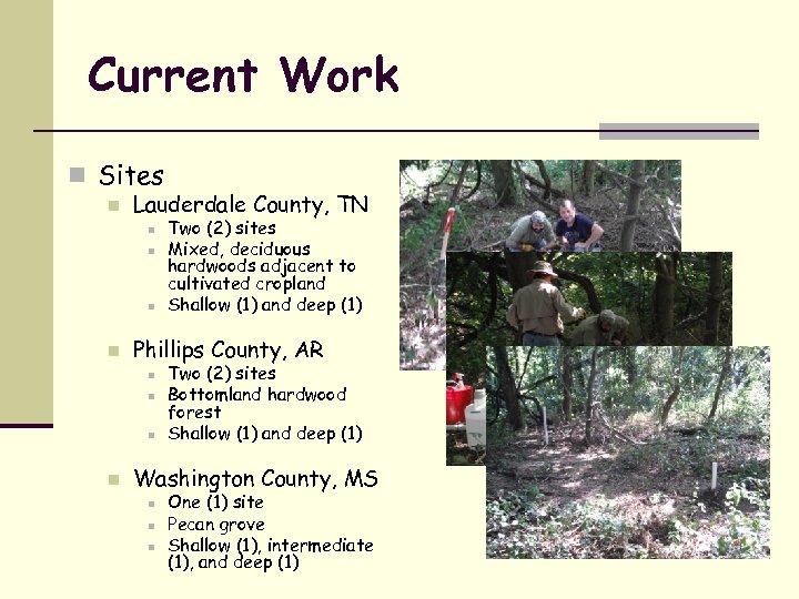 Current Work n Sites n Lauderdale County, TN n n Phillips County, AR n