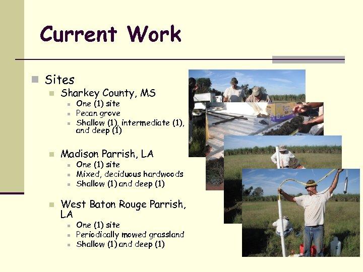 Current Work n Sites n Sharkey County, MS n n Madison Parrish, LA n