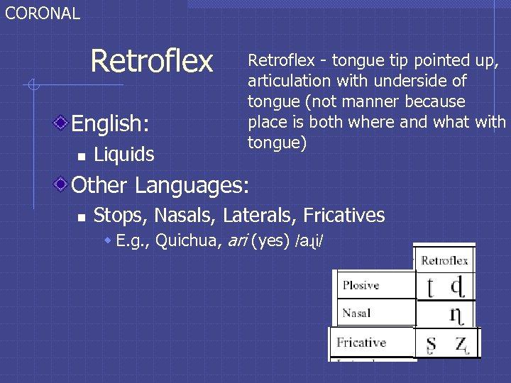 CORONAL Retroflex English: n Liquids Retroflex - tongue tip pointed up, articulation with underside