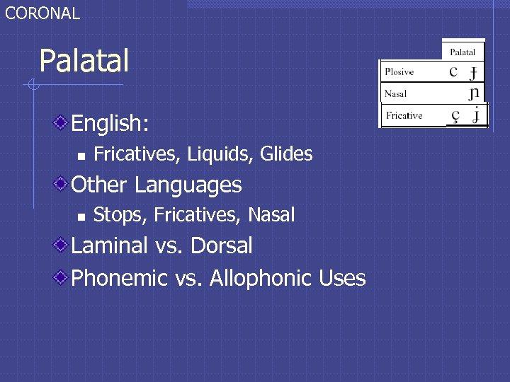 CORONAL Palatal English: n Fricatives, Liquids, Glides Other Languages n Stops, Fricatives, Nasal Laminal