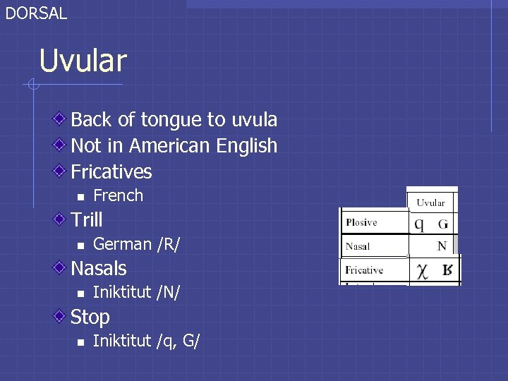 DORSAL Uvular Back of tongue to uvula Not in American English Fricatives n French