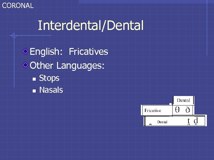 CORONAL Interdental/Dental English: Fricatives Other Languages: n n Stops Nasals