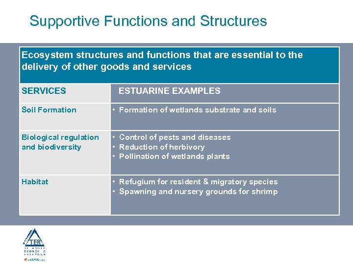 Supportive Functions and Structures Ecosystem structures and functions that are essential to the delivery