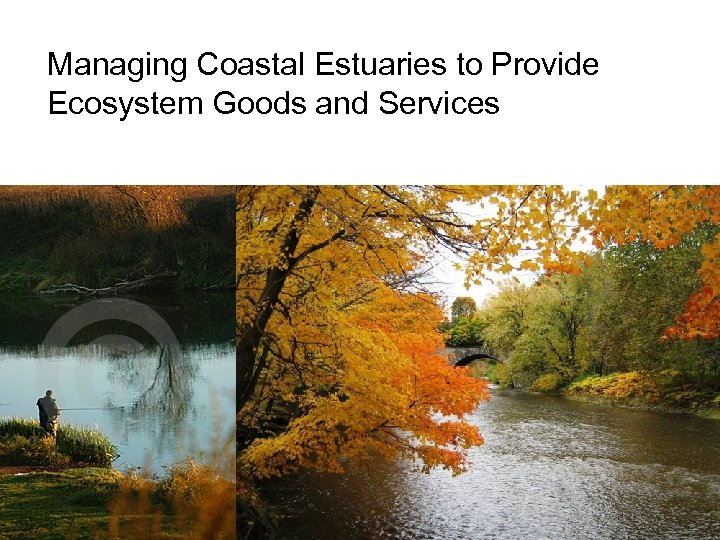 Managing Coastal Estuaries to Provide Ecosystem Goods and Services