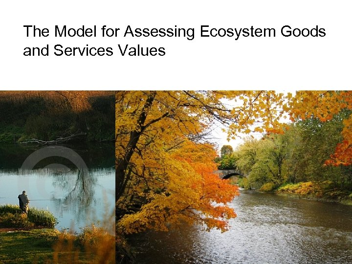 The Model for Assessing Ecosystem Goods and Services Values