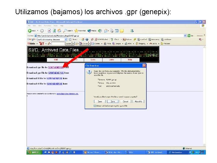 Utilizamos (bajamos) los archivos. gpr (genepix): 26