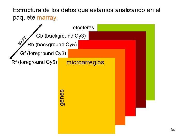 Estructura de los datos que estamos analizando en el paquete marray: slo ts etceteras