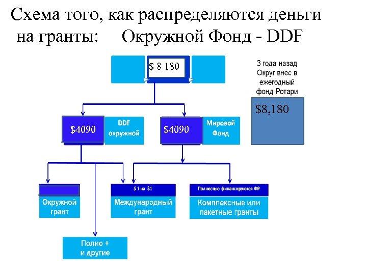 Схема того, как распределяются деньги на гранты: Окружной Фонд - DDF $ 8 180