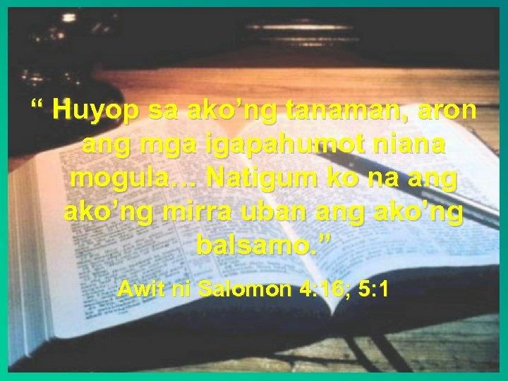 """"""" Huyop sa ako'ng tanaman, aron ang mga igapahumot niana mogula… Natigum ko na"""