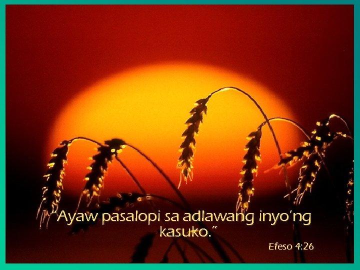 """""""Ayaw pasalopi sa adlawang inyo'ng kasuko. """" Efeso 4: 26"""