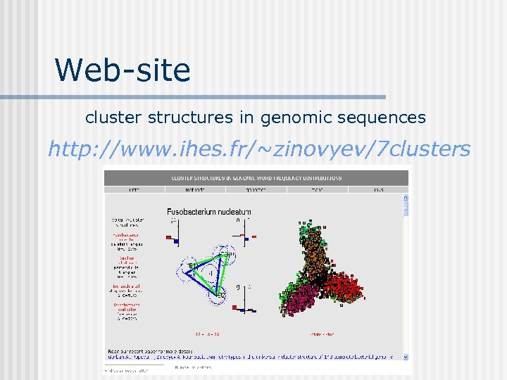 Web-site cluster structures in genomic sequences http: //www. ihes. fr/~zinovyev/7 clusters