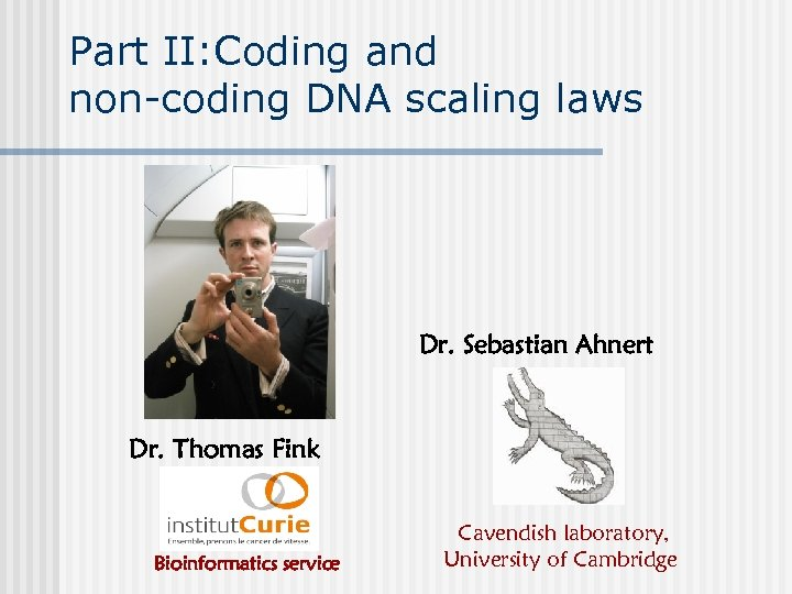 Part II: Coding and non-coding DNA scaling laws Dr. Sebastian Ahnert Dr. Thomas Fink