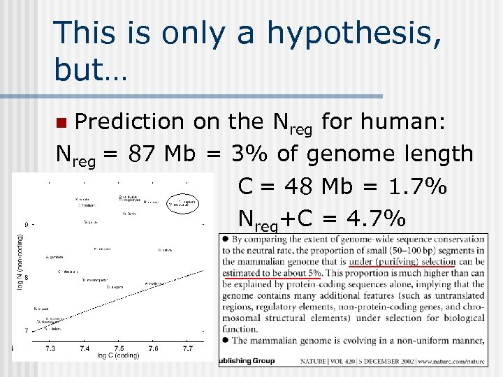 This is only a hypothesis, but… Prediction on the Nreg for human: Nreg =