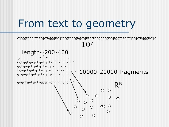 From text to geometry cgtggtgagctgatgctagggacgcacgtggtgagctgatgctagggacgc 107 length~200 -400 cgtggtgagctgatgctagggacgcacact tgagctgatgctagggacgcacaattc gtgagctgatgctagggacgcacggtg …… gagctgatgctagggacgcacaagtga 10000