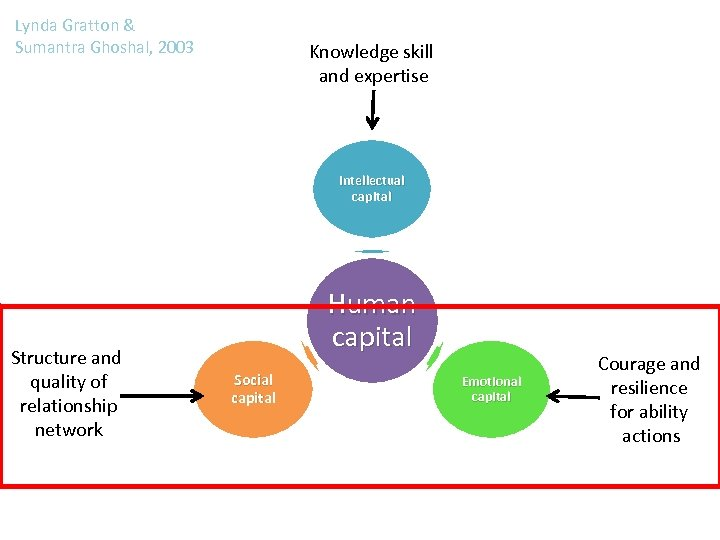 Lynda Gratton & Sumantra Ghoshal, 2003 Knowledge skill and expertise Intellectual capital Structure and