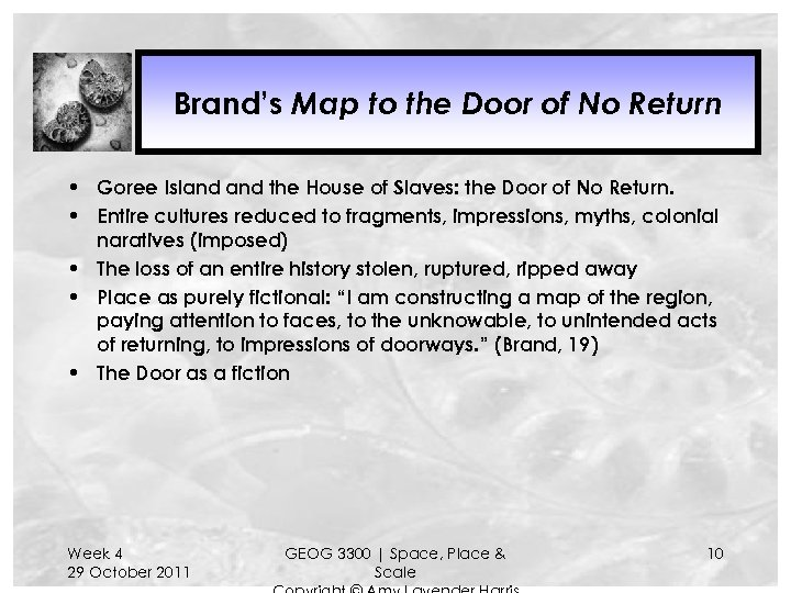 Brand's Map to the Door of No Return • Goree Island the House of