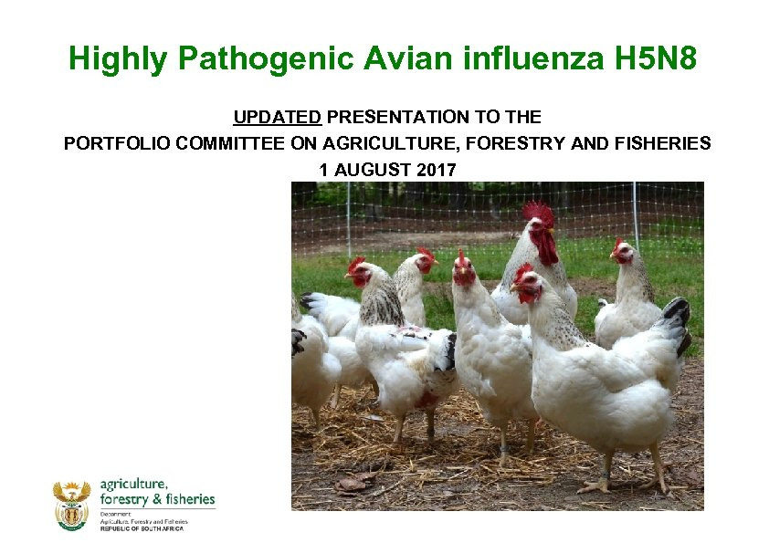Highly Pathogenic Avian influenza H 5 N 8 UPDATED PRESENTATION TO THE PORTFOLIO COMMITTEE