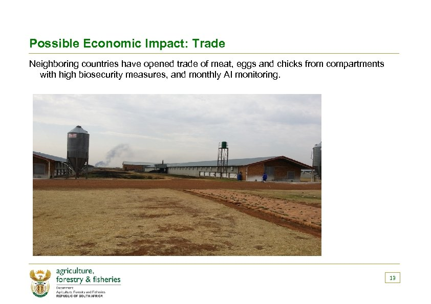 Possible Economic Impact: Trade Neighboring countries have opened trade of meat, eggs and chicks