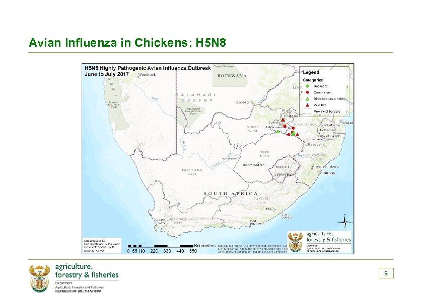 Avian Influenza in Chickens: H 5 N 8 9