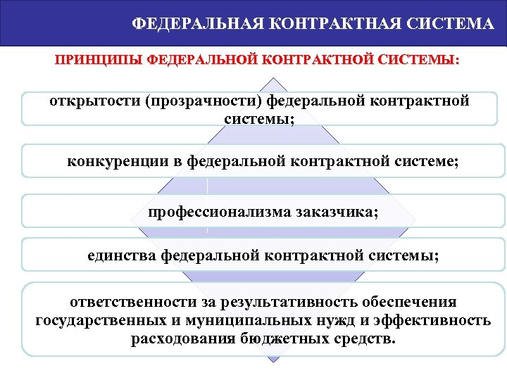 ФЕДЕРАЛЬНАЯ КОНТРАКТНАЯ СИСТЕМА ПРИНЦИПЫ ФЕДЕРАЛЬНОЙ КОНТРАКТНОЙ СИСТЕМЫ: открытости (прозрачности) федеральной контрактной системы; конкуренции