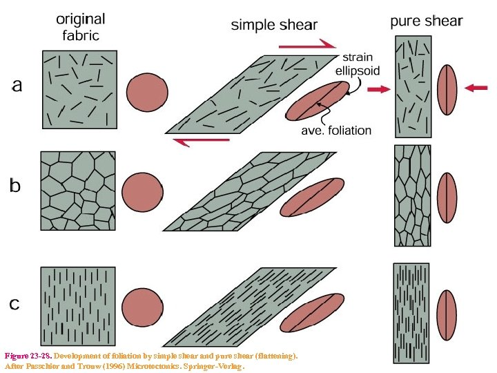 Figure 23 -28. Development of foliation by simple shear and pure shear (flattening). After