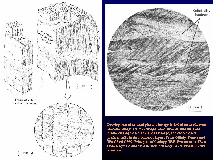 Development of an axial-planar cleavage in folded metasediments. Circular images are microscopic views showing