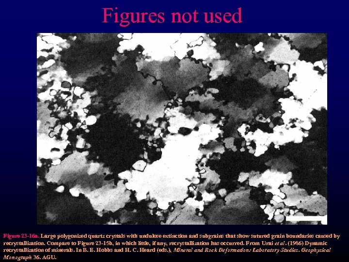 Figures not used Figure 23 -16 a. Large polygonized quartz crystals with undulose extinction