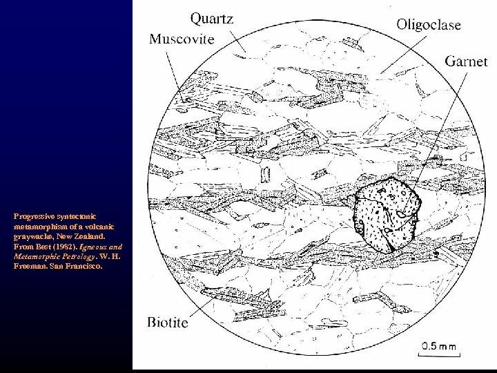 Progressive syntectonic metamorphism of a volcanic graywacke, New Zealand. From Best (1982). Igneous and