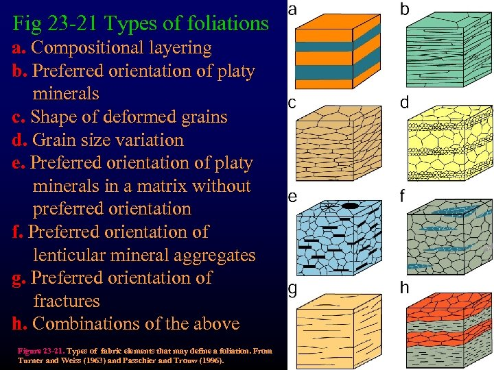 Fig 23 -21 Types of foliations a. Compositional layering b. Preferred orientation of platy
